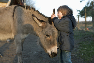 Girl whispering in donkey's ear on field