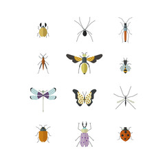 Vector collection of insects made in modern flat style.