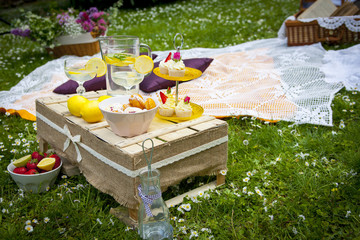 Wedding picnic arrangement in the middle of the nature