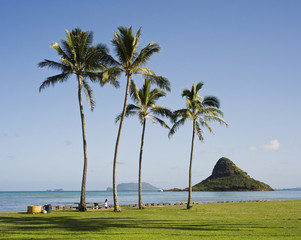 View of Chinaman's Hat from beach, Oahu, Hawaii, USA