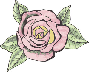 Drawing tattoo rose
