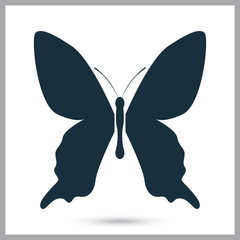 Butterfly icon on the background