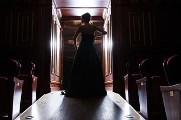 back view of elegant woman's silhouette in doors