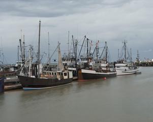 Fishing fleet at Richmond, British Columbia, Canada,