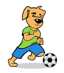 puppy participate on a soccer game