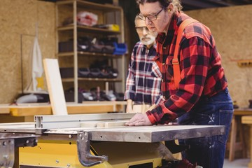 Focused duo of carpenter cutting a wood plank