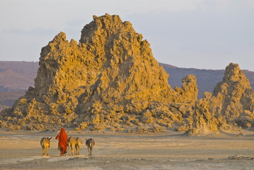 Bedouin bringing their donkeys home in the stunning landscape of Lac Abbe, Djibouti, Africa