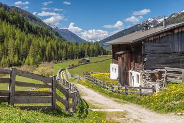 Altes Bauernhaus und Sommerwiese in Kasern