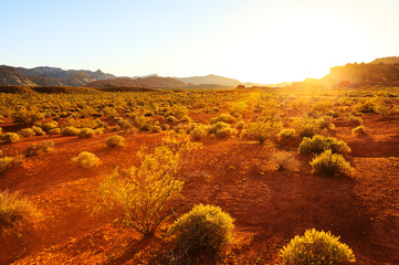 Desert over sunset at Southern Nevada, Valley of Fire State Park, USA