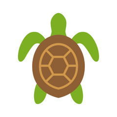 Sea turtle / marine turtle top view flat color icon for nature apps and websites