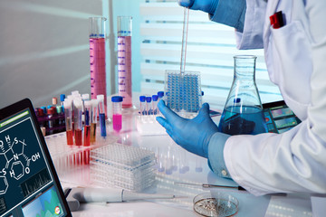 biochemical engineer working with microplate in a laboratory experiment / researcher working in a biotechnology lab