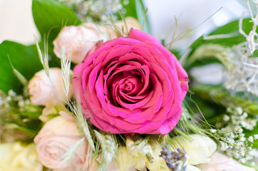 Pink rose on wedding day
