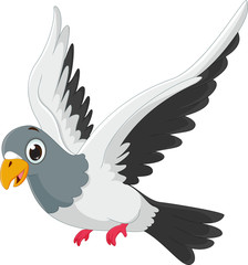 cute pigeon cartoon flying