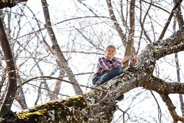 Smiling boy(14-15) sitting on high tree branch