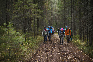 Group of hikers walking along dirt road in forest
