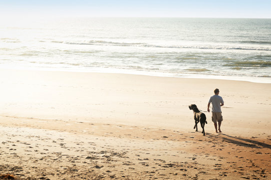 Mid adult man walking on beach with dog