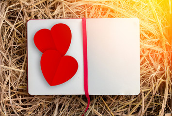 blank page  diary on hay box with red paer heart shape.jpg