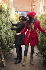 Young women choosing christmas tree