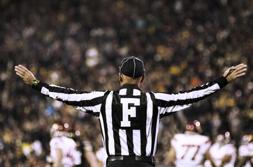 Rear view of referee with arms outstretched in stadium