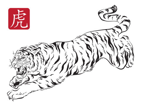 Vector illustration of jumping tiger in traditional asian ink calligraphy style. Black and white isolated. Hieroglyph meaning is TIGER