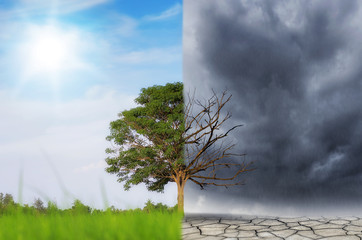 Concept of climate change.