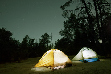 Illuminated tents on field in forest