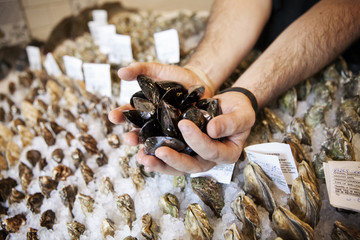 Cropped image of hands holding oysters