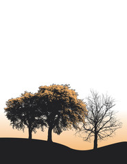 Three Tree Landscape background for web or print use
