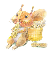 Squirrel with nuts of peanut. Watercolor illustration