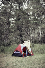Woman spreading out a blanket in forest