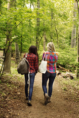 Rear view of female friends walking in forest