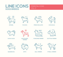 Dog breeds - line design icons set