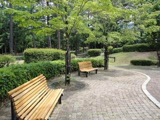 ベンチのある公園