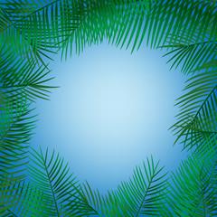Frame of palm leaves