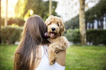 Rear view of woman embracing poodle