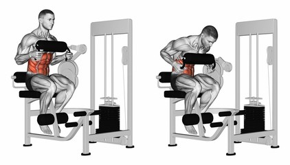 Abdominal Crunch in AB machine. Exercising for bodybuilding Target muscles are marked in red. 3D illustration