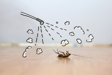 Spray on cockroach on floor , pest control concept