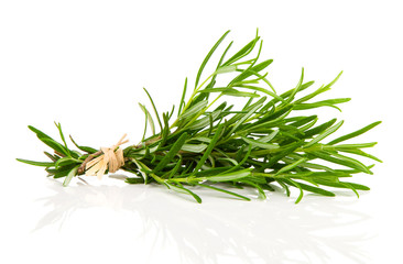tied fresh rosemary on a white background
