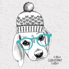Image portrait of a dog (Beagle) in a hat and glasses. Vector Image.