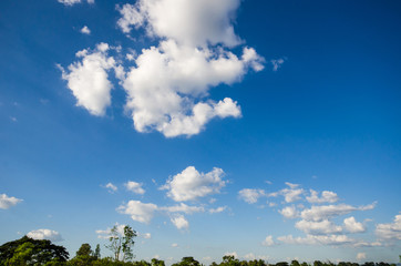 background of gradient blue sky with white cloud and green field, trees and grass field.