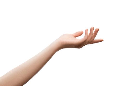 Female hand holding something, isolated