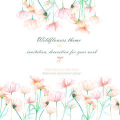 Background, invitation card, template postcard with the tender pink cosmos flowers, hand drawn on a white background, background for your card and work
