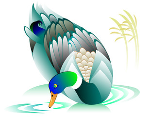 Illustration of swimming duck, vector cartoon image.