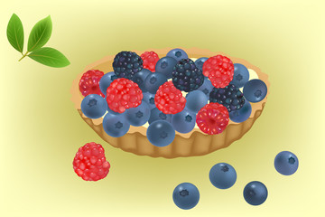 Summer berries cake with blueberries, blackberries and raspberries vector