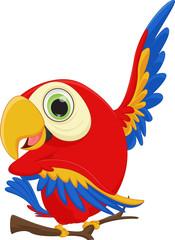 cute macaw bird cartoon waving