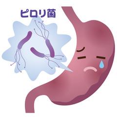 ピロリ菌 病原菌 胃