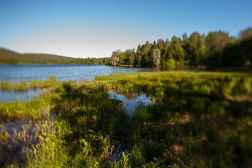 Finland Kuopio Landscape
