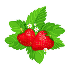 two strawberries on green leaves