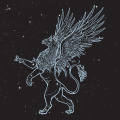 Griffin, griffon, or gryphon on nightsky background.