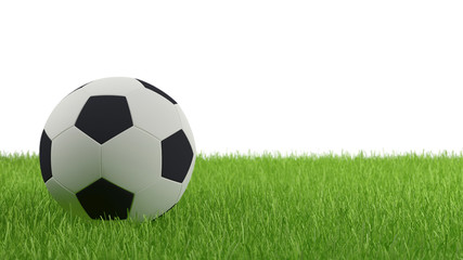 Soccer Ball on Green Grass with White Background